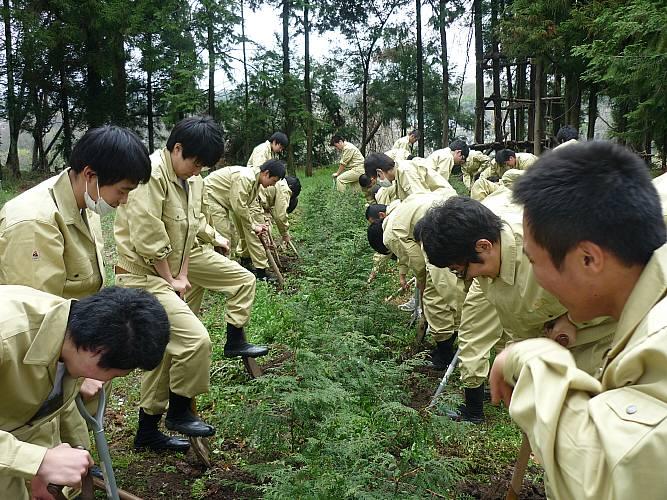 森林科学 - 埼玉県立秩父農工科学高等学校